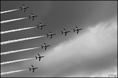 Black Swan (Donna Rowley) Tags: redarrows red arrows plane formation jets aerobatic airplane display airshow newcastle mourne swan blackandwhite bw