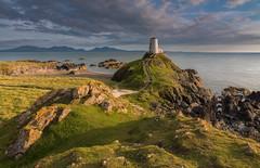 'Golden Llanddwyn' - Llanddwyn Island, Anglesey (Kristofer Williams) Tags: llanddwynisland ynysllanddwyn anglesey wales lighthouse coast beach island walescoastpath