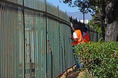 Kennedy15 (Genova citt digitale) Tags: richiedenti asilo genova piazzale kennedy agosto 2016 volontari nigeria lavoro ilva