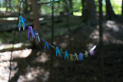 Trails (lacygentlywaftingcurtains) Tags: ottylake cottage vacation clothespins clothesline colours colors plastic outdoor nature laundry dof