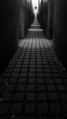 Memorial to the Murdered Jews of Europe (canaanite98) Tags: jews jude nazi wwii ww2 memorial world war ber berlin genocide europe religion architecture holocaust deutschland deutsche germany 2016