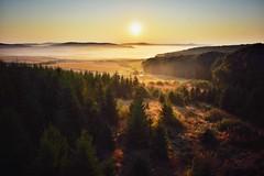 Sunrise (vladvizante) Tags: outdoor sunrise nature countryside morning dew cold romania nikon d3300 serene landscape