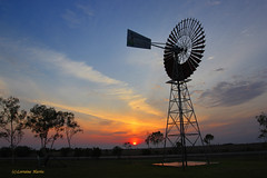 Julia Creek Joy (aussiegypsy_Katherine, NT) Tags: morning travel water windmill rural sunrise town country australian australia qld queensland outback remote aussie isolated bore countryliving juliacreek countrytown lorraineharris