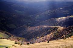 Radiša Živković - So many roads II (Radisa Zivkovic) Tags: road autumn light shadow sunlight mountain yellow forest landscape countryside nikon scenery europe ray hill serbia beam layers srbija golija planina