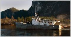 'whats t'use' - actual boat name (tesseract33) Tags: world ocean travel light sunlight mist boats nikon squamish nikondigital squamishchief mamquamblindchannel nikond300 peterlangphotography squamishphotographers tesseractee