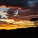 "Sunset in Etendeka Tablelands Namibia • <a style=""font-size:0.8em;"" href=""https://www.flickr.com/photos/21540187@N07/8292719498/"" target=""_blank"">View on Flickr</a>"
