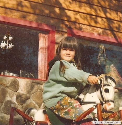 Flicka the House Horse