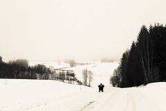 Riding a kicksled. ker spark. (MikaelWiman) Tags: road trees winter snow landscape se sweden kil blackandwhitephotography vrmland kicksled