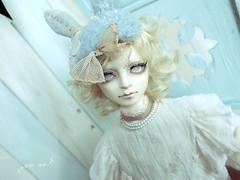 gaucher (room8Xaki) Tags: doll bjd superdollfie