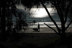Man and his dog (Ann's Pix Still not up to par sorry to all my cont) Tags: beach sunrise walking waves manandhisdog woodgate 52of2012