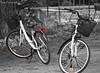 Bicicletas (DaniFdezKarbo) Tags: bike bicycle bici bicicletas desaturación desaturacónselectiva