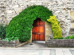 Door of good Hope (Batikart) Tags: door city travel light plants brown house building green nature wall architecture canon creativity outdoors hope grey spain holidays europe day pattern arch natural path stones framed eingang border natur pflanzen entrance citylife haus tranquility fringe steine textures growth doorway journey stadt dreams architektur ursula idyllic esp tr muster variation paisvasco spanien freshness weg mauer 2010 elegance a610 bogen sander gipuzkoa zarautz bayofbiscay canonpowershota610 twiners eisenbahnschwellen 100faves 2013 200faves kletterpflanzen naturalstones railroadsleeper batikart golfvonbiskaya 201305