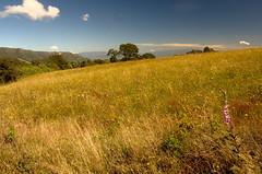Fúquene landscape