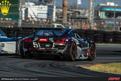 APR-Motorsport-Rolex-24-2013-037