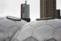 Rotterdam's Floating Pavilion (Inhabitat) Tags: architecture rotterdam thenetherlands bubbles urbandesign globalwarming dutchdesign floatinghouses daylighting rijnhaven energyefficiency halfspheres floatingpavilion waterissues floatingarchitecture rotterdamclimateproof analisaalperovich deltasyncandpublicdomainarchitects