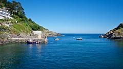 DSCF9096 (douglaswestcott) Tags: summer england english coast seaside cornwall village harbour coastal quaint polperro