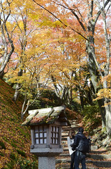 Couple in Autumn  (Patrick Vierthaler) Tags: kyoto japan kansai autumn fall herbst ahorn maple leaves yellow red herbstlaubfrbung herbstlaub momiji japanese japanische      11 2012