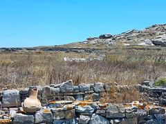20160714_130846_low (Cinzia, aka microtip) Tags: delos cicladi grecia archeology antichit archaelogy island unescoworldheritagesite mithology sanctuary ancientgreece