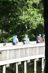 IMG_4472 (lojackr) Tags: nolandtrail t200 hike