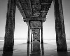La Jolla Pier (cylynex) Tags: california landscape bnw blackandwhite pier lajolla lajollapier sandiego reflections travel westcoast traveling travelphotography beach monochrome nikon d800 santocommarato waterreflections