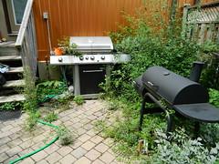 Toronto Playter Estates backyard weeding before Paul Jung Gardening Services (Paul Jung Gardening Services) Tags: weeding torontogardencleanup playterestates broadview pauljunggardeningservices