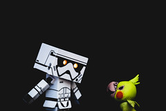 #Fight (David C W Wang) Tags: act toy   danboard