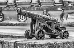 Canon (Alan Reeve) Tags: blenheim palace caonon gun mono efexpro silver nik