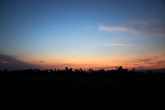 Sunset Colors (Larissa Cadorin) Tags: natura natureza nature sublime soft life santacatarina sul litoralsul southbrazil southamerica colours dusk colorsinourworld