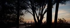 Silhouette of Sunset Watchers (jane.garratt) Tags: 2016 australia canonef24105mmf4l canoneos5dmarkii darwin july mindilbeach northernterritory sunset tropical winter