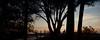 Silhouette of Sunset Watchers (jane.garratt♥) Tags: 2016 australia canonef24105mmf4l canoneos5dmarkii darwin july mindilbeach northernterritory sunset tropical winter landscape textured texturesinlayers postprocessed