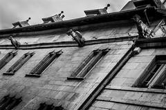 Besanon, gargouilles rue Battant (loroche25) Tags: besanon gargouille noirblanc noiretblanc blackandwhite negroyblanco canon canon5018 france franchecomte canoneos600d