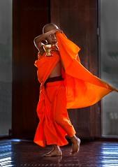 _MG_5030-le-17_04_2016_wat-thail-wattanaram-maesot-thailande-christophe-cochez (christophe cochez) Tags: burmes burma birmanie birman myanmar thailand thailande maesot myawadyy monk bonze novice religion watthailwattanaram travel voyage bouddhisme buddhism portrait