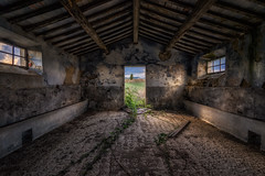 The tree, Tuscany (urbanexpl0rer) Tags: toscany italië stable abandoned hdr tree empty colorful windows