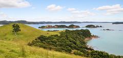 Bay of Islands (Kiwi-Steve) Tags: nz newzealand northisland northland bayofislands urupukapukaisland landscape nikon nikond90 tree rural