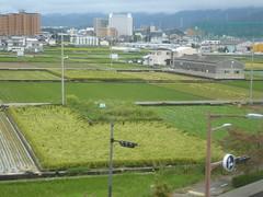 Flattened rice field (seikinsou) Tags: japan spring haruka train jr railway kix kansai airport shinosaka hineno rice field kankuhinenostationhotel golf cage mountain cloud
