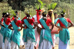 Tribal Dance at Poush Mela, Santiniketan (Biswajit_Dey) Tags: people woman india travelling girl festival artist culture tribal tradition custom folkdance bengal bengali shantiniketan westbengal villagelife thegalaxy villagewoman poushmela sonydsch55 beautifulbengal