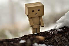 finally out (PhotoRobo Rod) Tags: california anime toy toys 50mm nikon cardboard actionfigures danbo revoltech d5100