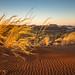 """Sunset at Namib Rand Nature Reserve Namibia • <a style=""""font-size:0.8em;"""" href=""""https://www.flickr.com/photos/21540187@N07/8291671671/"""" target=""""_blank"""">View on Flickr</a>"""