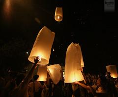 Loi Krathong Festival 2012 (desomnis) Tags: night canon thailand eos 350d asia nightshot sigma chiangmai traveling 1020mm canoneos350d eos350d loikrathong sigma1020 loikrathongfestival desomnis loikrathong2012 loikrathonginchiangmai