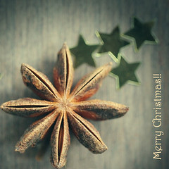 Merry Christmas and Happy New Year (Morningdew Photography) Tags: christmas xmas blue winter brown white toronto ontario canada black macro green cooking closeup canon square stars gold grey star golden baking dof bokeh gray tan cream merrychristmas sq herb 2012 on staranise callingallangels alienskin 2013 exposure4 morningdewphotography t1i ef100l christmaspicturegallery