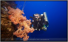 Shallow_place_-_60m (aquadao) Tags: moon deep diving techno sasha cave wreck rebreather wieslaw aquadao