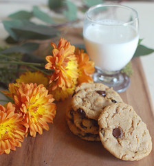 chocolate chip oatmeal (aileen aquino) Tags: food cookies 35mm baking nikkor foodie nikond200