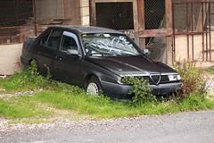 Alfa Romeo 155 1.8 Twin Spark (Alessio3373) Tags: abandoned alfa romeo alfaromeo scrap abandonment 155 abandonedcar alfa155 rottame abbandono twinspark scrappedcar 1800twinspark