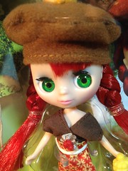 B6 1620 Blythe Loves Littlest Pet Shop Autumn Glam box front doll with red hair and green eyes