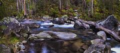 Snow Fed (southern_skies2) Tags: mountains bush stream australia victoria fallscreek