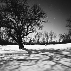 Millerton, New York (Adam Garelick) Tags: winter blackandwhite snow 120 6x6 film nature monochrome night mediumformat landscape hasselblad 100 rodinal millerton 2012 fujineopanacros 235m7