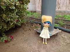 Debo en el parque Doramas