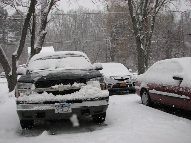 family trees winter usa snow cars chevrolet home america sedan truck outside us gm unitedstates pickup pickuptruck headlights driveway chevy snowing newyorkstate oldcar frontyard acura automobiles 2012 nystate redcar frontend generalmotors hudsonvalley grills chevytruck 2door americancar motorvehicles oldchevytruck stremy ulstercounty twodoor oldpickuptruck 4door americantruck midhudsonvalley fourdoor japanesecar ulstercountyny 4doorsedan gmtruck fourdoorsedan acuramdx gmcar greytruck 2003silverado chevypickuptruck oldchevys chevysedan 2010s chevyprizm oldsedan stremyny townofesopus 2003chevy americanpickuptruck richie59 1999chevy 2000struck 2000scar 2010scar 2003chevysilverado townofesopusny dec2012 dec292012 1999prizm