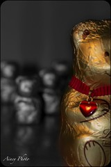 Bear  Family (Aincy11) Tags: bear family famiglia chocolate swiss orso lindt cioccolata orsetto lindle