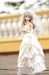 DSC_8017 (TonyBSD) Tags: wedding hk girl hongkong nikon doll dress bjd yukiko dslr dd dollfie volks   tsingmabridge    tsingyi  dollfiedream tingkaubridge lantaulink     lantaulinkvisitorscentre d7000